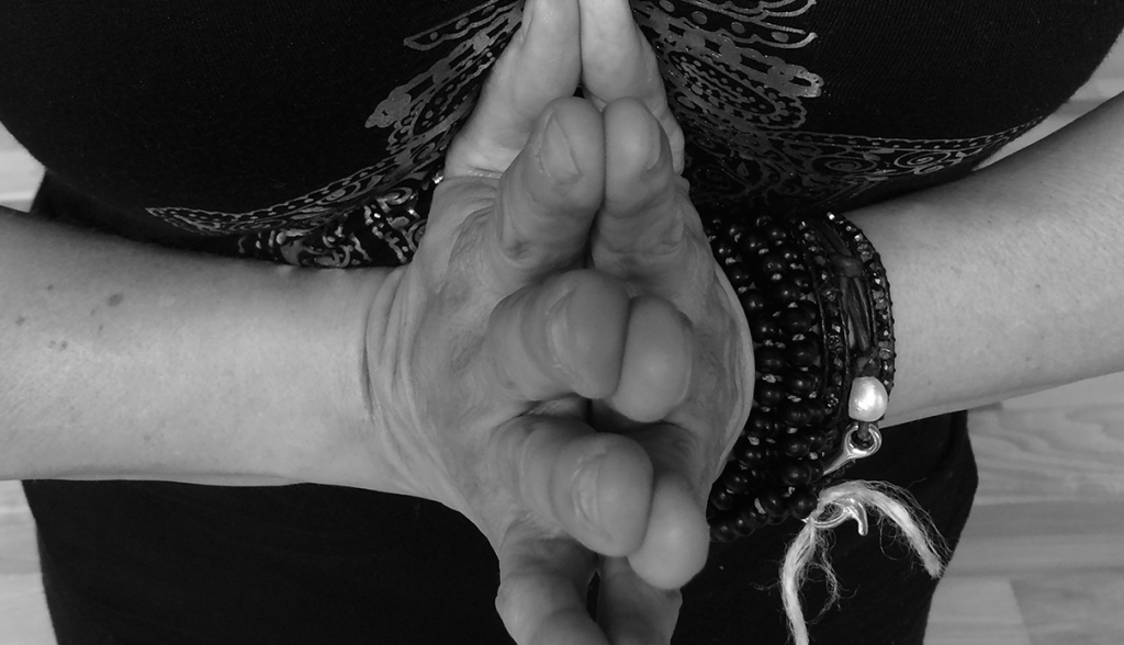 Dragonfly yoga studio yoga teacher training Prayer hands image credit jessica cuadra New7-1024x588